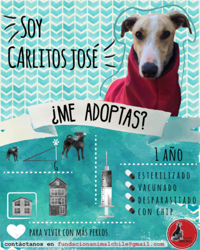 Carlos José